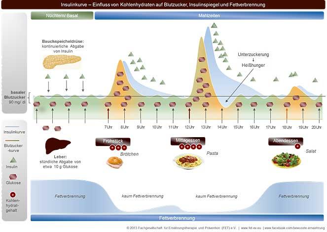 lebensmittel fettverbrennung