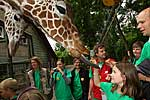 Giraffe Fine mit Kinder mit Diabetes