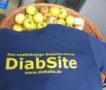 Diabetes-Portal DiabSite