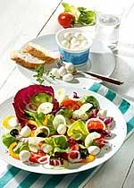 Vitaminsalat mit Mozzarella