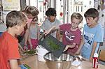 Düsseldorfer Kinder beim 'SMS-Kochen'