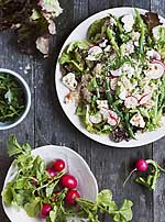 Gemischter Salat mit Radieschen, Petersilie und Käse