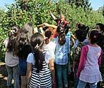 Kinder bei der Apfelernte