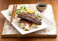 Curry-Makrele mit Sommersalat