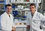 Prof. Dr. Stefan Lorkowski (li.) und Prof. Dr. Michael
