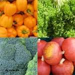 Gesund für Menschen mit und ohne Diabetes ist buntes Gemüse frisch zubereitet.