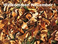 Herbstzeit ist Grippezeit