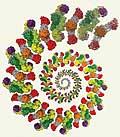 Künstlerische Darstellung der zyklischen Fettsäure-Herstellung durch die Fettsäure-Synthase
